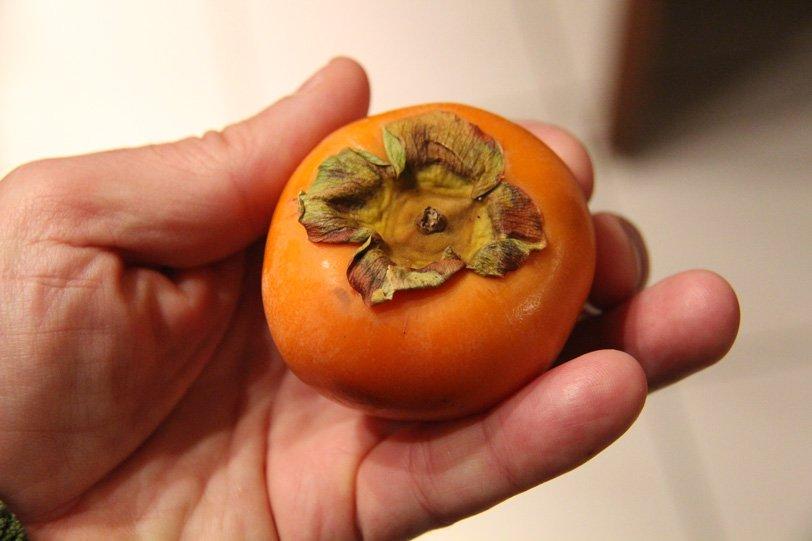 Les fruits exotiques - Arbre a kaki nom ...